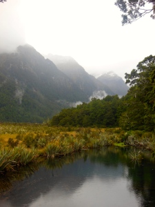 Fiordland National Park - Stray Bus NZ South Island