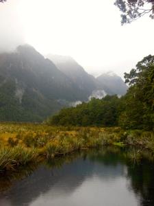 Fiordland National Park - Stray Bus NZ South Island